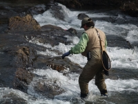 Helen GA Trout Tournament 2013 #3.JPG
